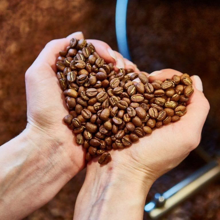 close-up view of roasted coffee beans in womans hand